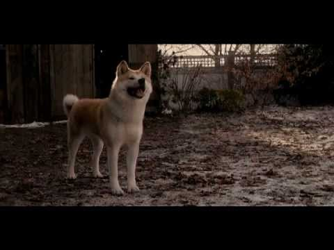 Soundtrack to the movie Hachiko - 07. Under The Fence